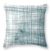 S.3.51 Throw Pillow