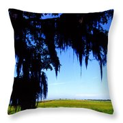 Sabine National Wildlife Refuge Along The Creole Nature Trail Throw Pillow