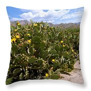 Sabino Canyon 3 Throw Pillow