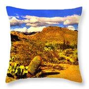 Sabino Canyon Panorama No. 1 Throw Pillow