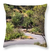 Sabino Canyon Road Throw Pillow