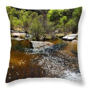 Sabino Creek Throw Pillow