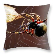 Sac Spider Catches A Leaf Throw Pillow