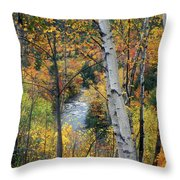 Saco River And Birches Throw Pillow