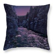 Sacramento River Throw Pillow