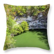 Sacred Cenote Vertical View Throw Pillow