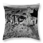 Sacred Ground Throw Pillow