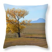 Sacred Landscape Throw Pillow