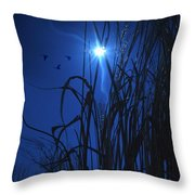 Sacred Moon... Throw Pillow