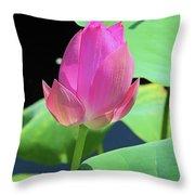 Sacred Pink Throw Pillow