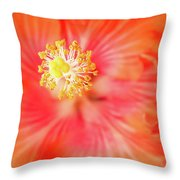 Sacred Song Throw Pillow