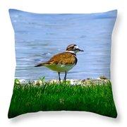 Sad Bird Near Pond Throw Pillow