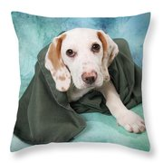 Sad Dog On Pastels Throw Pillow