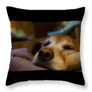 Sad Dog Throw Pillow