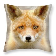 Sad Eyed Fox Of The Lowlands - Red Fox Portrait Throw Pillow