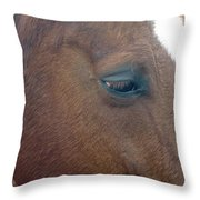 Sad Eyed Throw Pillow