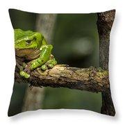 Sad Green Throw Pillow