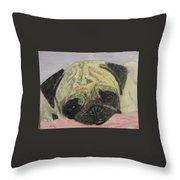 Snugly  Pug Throw Pillow