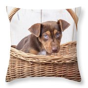 Sad Puppy Throw Pillow