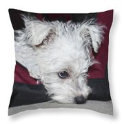 Sad Puppy Throw Pillow