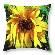 Sad Sunflower Throw Pillow