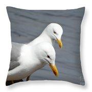 Saddleback Pair  Love Throw Pillow