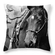 Saddled To Go Throw Pillow