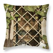 Safe Harbor Throw Pillow by JAMART Photography