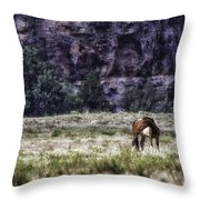 Safe In The Valley Throw Pillow