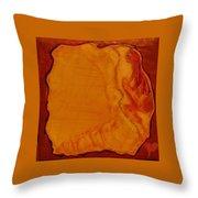 Safe Prison Throw Pillow