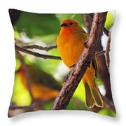 Saffron Pair Throw Pillow