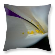 Safron Throw Pillow
