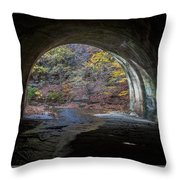 Sagamore Creek Tunnel Exit Interior Throw Pillow