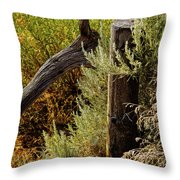 Sage And Post Throw Pillow