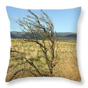 Sage Brush And Tumble Weed Throw Pillow