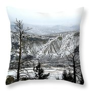 Sage Hills Throw Pillow