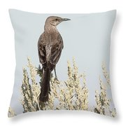 Sage Thrasher On Perch Throw Pillow