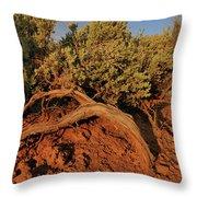 Sagebrush At Sunset Throw Pillow