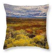 Sagebrush Country Throw Pillow