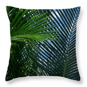 Sago Palm Fronds Throw Pillow
