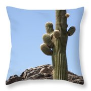 Saguaro 1 Throw Pillow