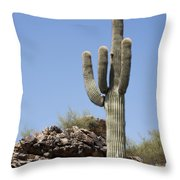 Saguaro 3 Throw Pillow