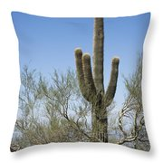 Saguaro 8 Throw Pillow