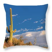 Saguaro Cactus - Symbol Of The American West Throw Pillow