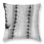 Saguaro Cactus Close-up  Bw Throw Pillow
