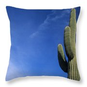 Saguaro Cactus H Throw Pillow