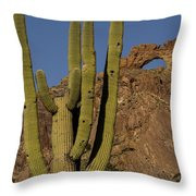 Saguaro Cactus Near Arch Throw Pillow