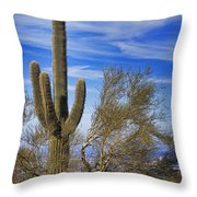 Saguaro Cactus Of The Desert Southwest Throw Pillow