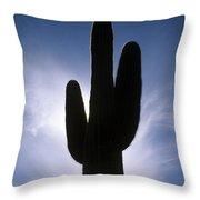 Saguaro Catus Silo Throw Pillow