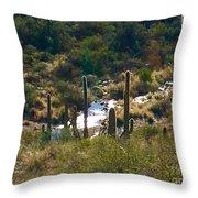 Saguaro Creek Throw Pillow
